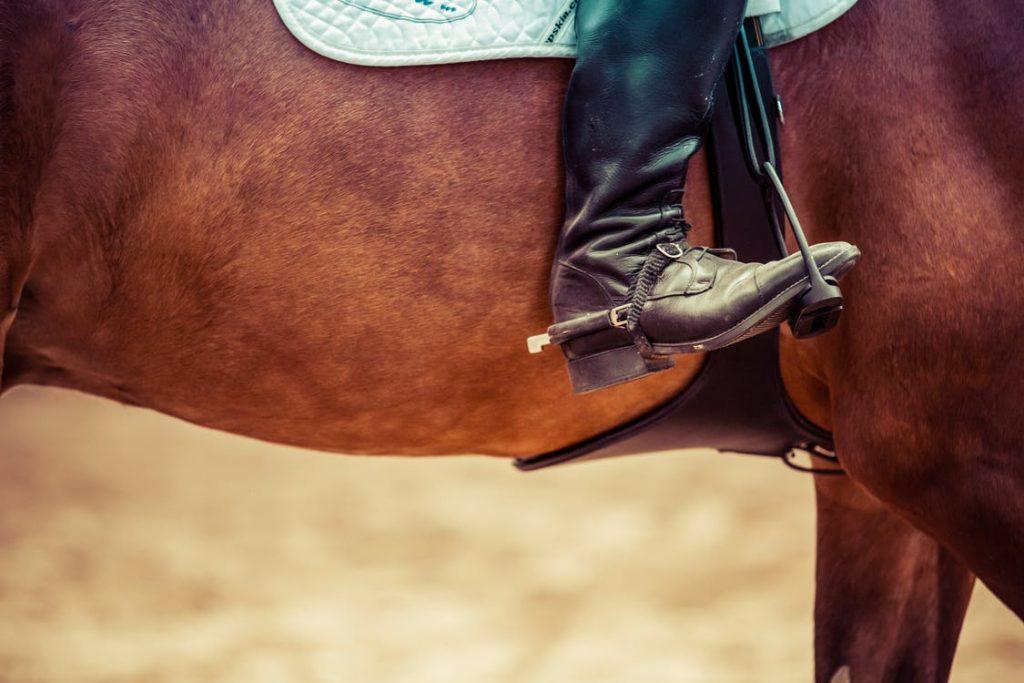 Penshaw Equestrian Centre