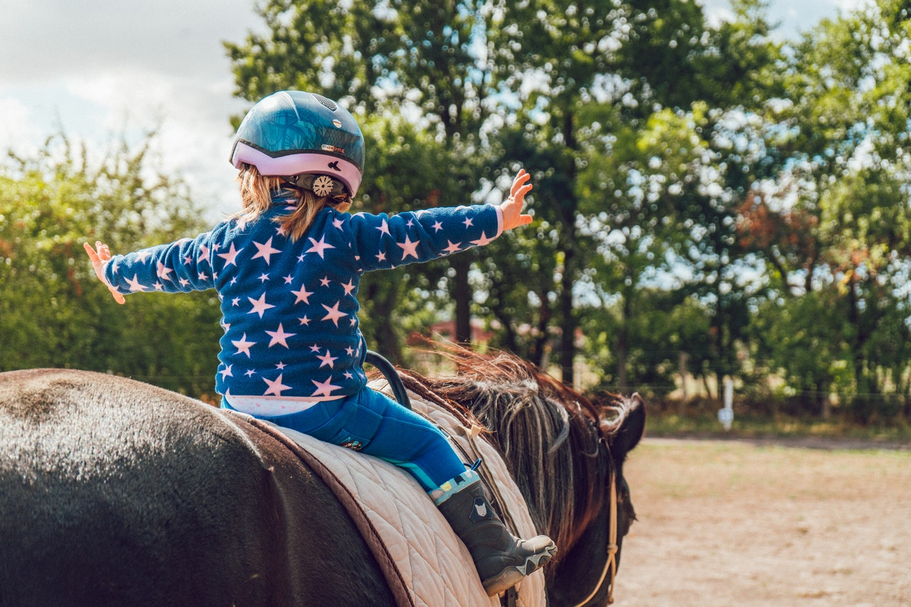 Rookin House Equestrian and Activity Centre