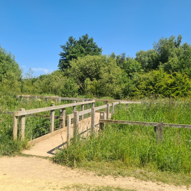 Summerhill Country Park