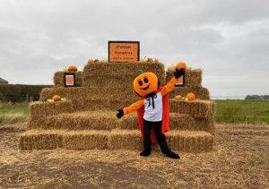 Pontac Farm Pumpkin