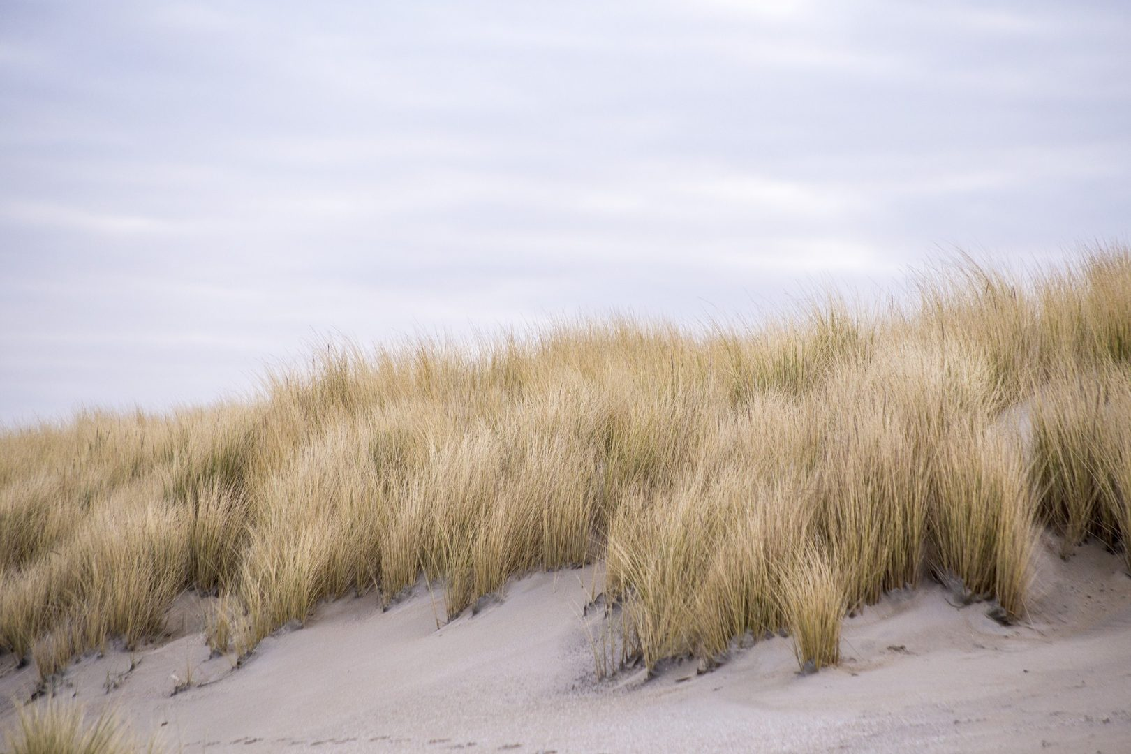 Amble Links Beach